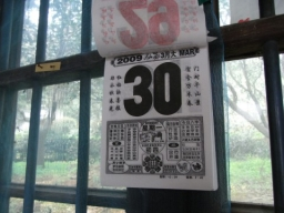 09碧螺春・龍井0611