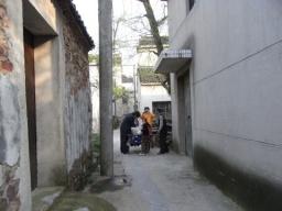 09碧螺春・龍井1747