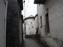 09碧螺春・龍井0026