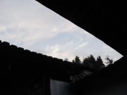 09春鉄観音0987