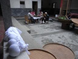09春鉄観音1123
