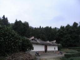 09春鉄観音1133