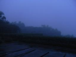 RIMG1596