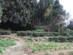RIMG0105