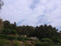 RIMG1186