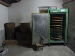 RIMG1254