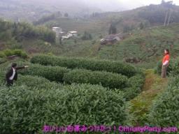 RIMG0199